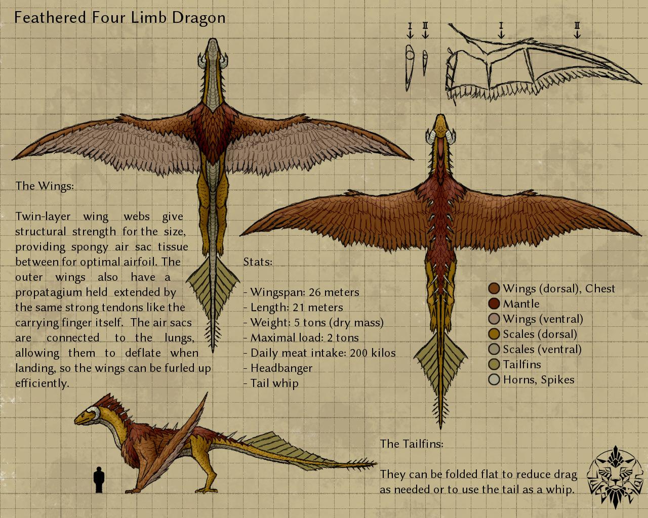 Feathered dragon refsheet