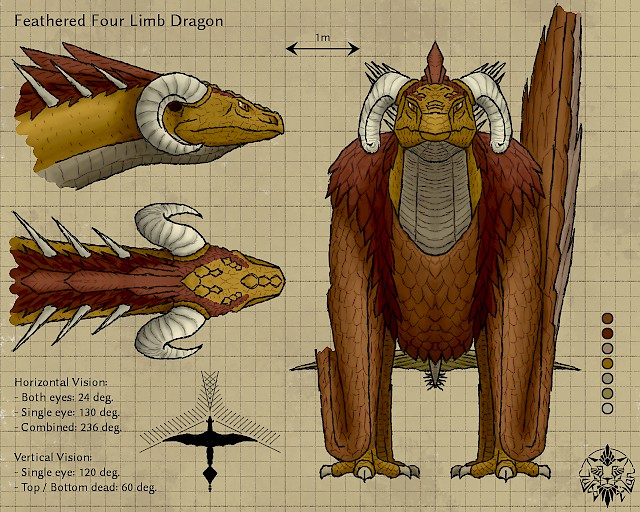 Feathered dragon refsheet #2